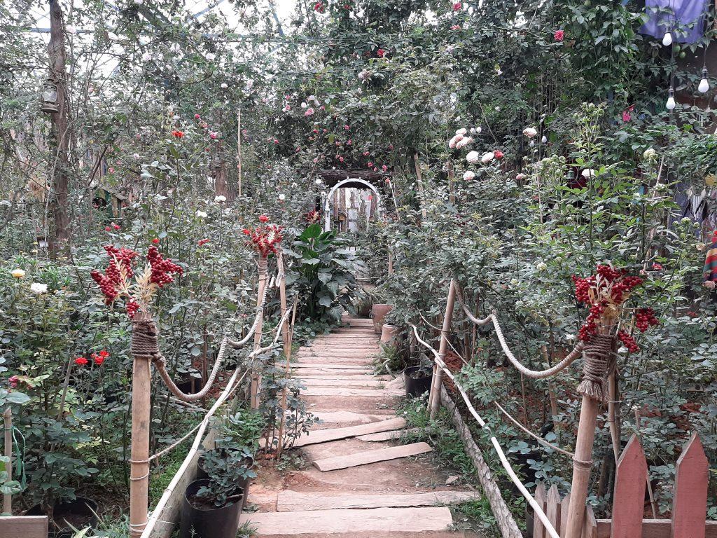 trieu doa hong da lat carmen 4 1024x768 - Lịch trình 04 ngày 03 đêm tại Đà Lạt với hoa hồng và lẩu cá tầm - Phần 105 - hanh-trinh-25, du-lich