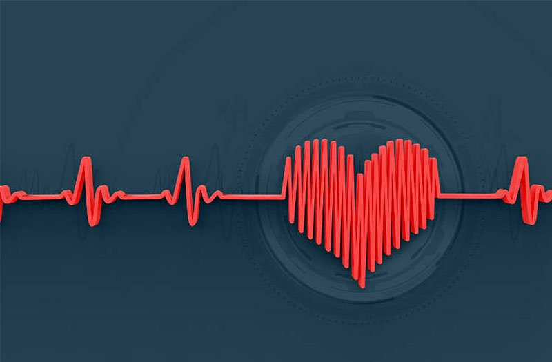 20210310 054458 604010 cac vung nhip tim.max 800x800 1 - Nhịp tim và những điều cần biết trong tập luyện thể thao - tham-khao, suc-khoe