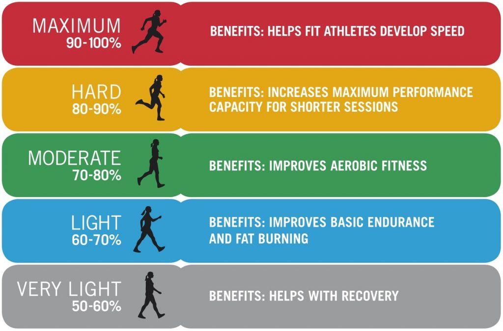 Heart Rate Zones 1024x675 - Nhịp tim và những điều cần biết trong tập luyện thể thao - tham-khao, suc-khoe
